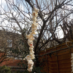 Popcorn bird feeders
