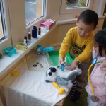 Veterinary surgery at The Priory